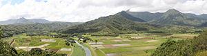 300px-Hanalei_Valley_from_the_Hanalei_Lookout_in_Hanalei,_Hawaii