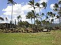 120px-Kauai-Heiau-Hikinaakala