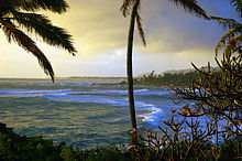 Ocean_view_from_the_coastline_of_Wailua,_Kauai