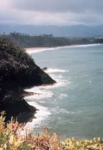 220px-Western_coast_of_Kauai_close_to_Barking_Sands